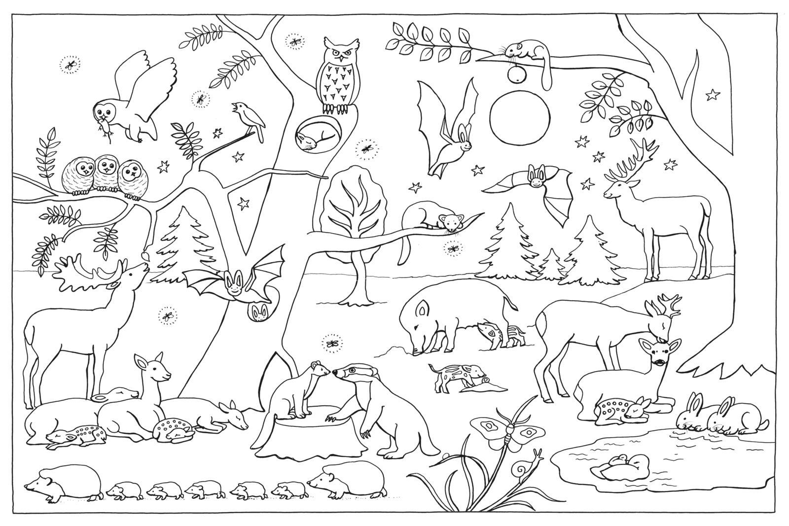 Mein Lieblings-Malbuch – Im Wald von Christine Henkel  Thienemann